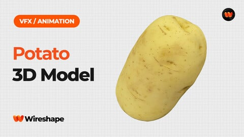 Potato - Extreme Definition 3D Scanned