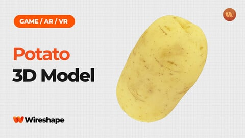 Potato - Real-Time 3D Scanned