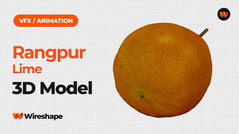 Rangpur Lime - Extreme Definition 3D Scanned