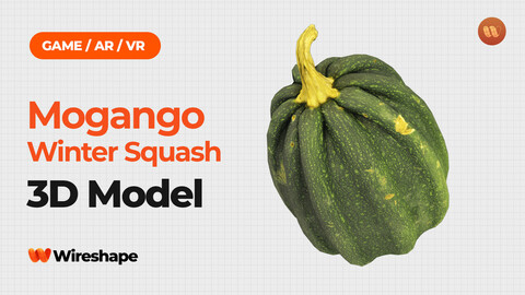 Mogango Winter Squash - Real-Time 3D Scanned