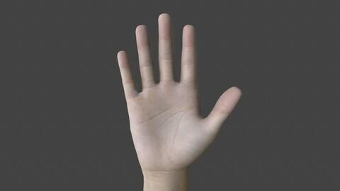 HAND.006 Rigged Hand