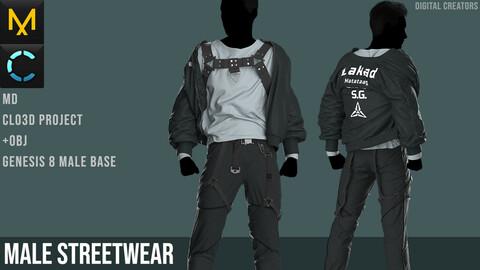 Male Streetwear. Marvelous Designer / Clo 3D project +obj