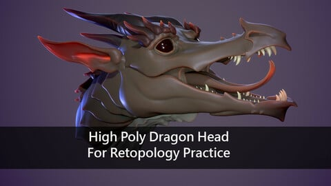High Poly Dragon Head For Retopology Practice
