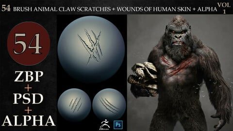 54 ZBRUSH ANIMAL CLAW SCRATCHES + WOUNDS OF HUMAN SKIN + ALPHA