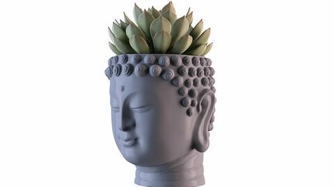 Head Buddha Vase