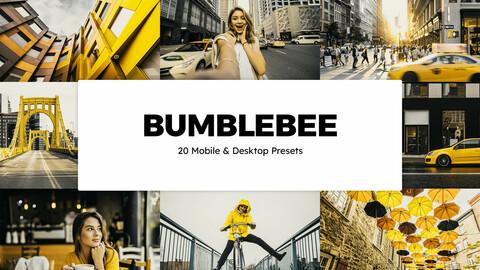 20 Bumblebee LUTs and Lightroom Presets