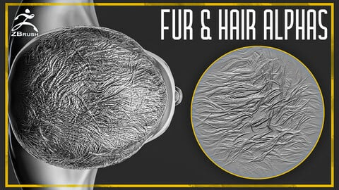 20 Fur and Hair Alphas for ZBrush