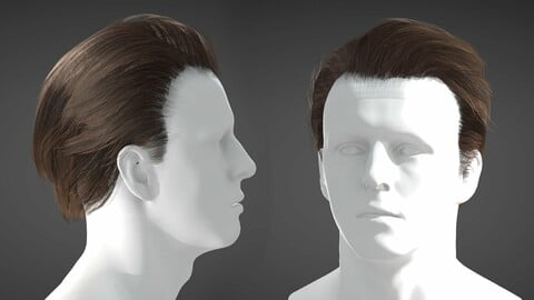 Realtime Male Hairstyle - Long 02 - Game Ready PBR Low Poly Model