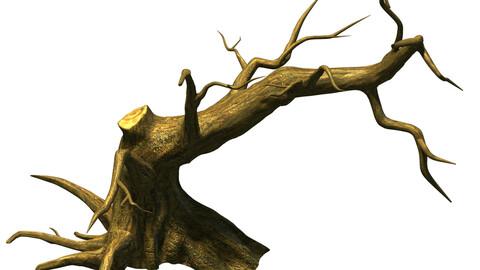 Fairy town - dead tree 4