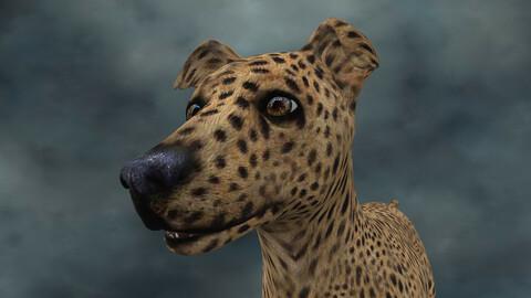 MDGH.007 Rigged Dog