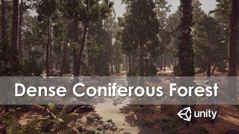 Dense Coniferous Forest