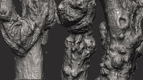 Z brush - Trunk Detail Brushes 3 Volume