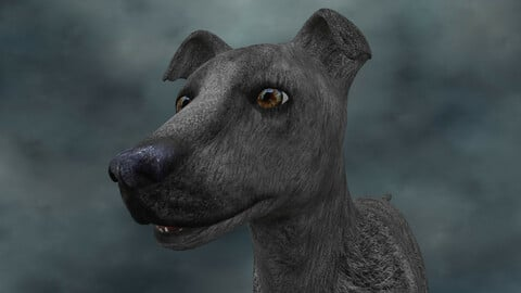 MDGH.020 Rigged Dog