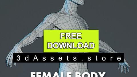 Character - Female Planar Anatomy