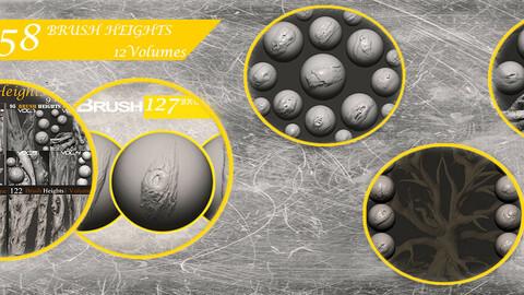 Z brush - Trunk Detail Brushes 12  Volumes