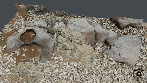 Beach Rock_0015(Photogrametry.Photoscan.obj,Photo)