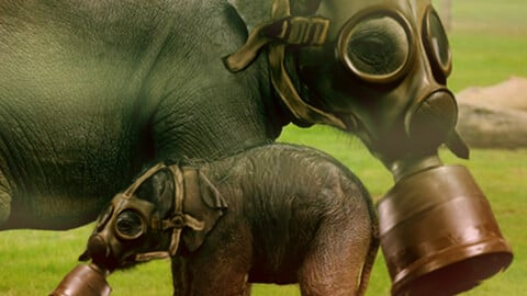 elephant art rejects pollution