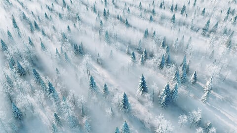 Snow scene overlooking snow mountain snow field pine tree snow northeast Daxinganling heavy snow valley mountain range rime snow field forest