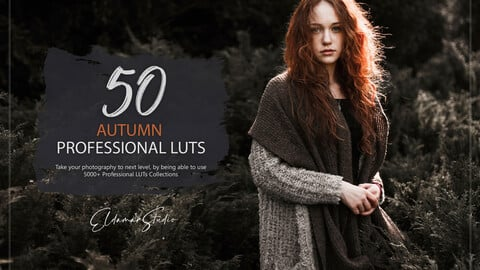 50 Autumn Forest LUTs and Presets Pack