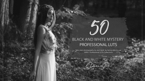 50 Black and White Mystery LUTs and Presets Pack