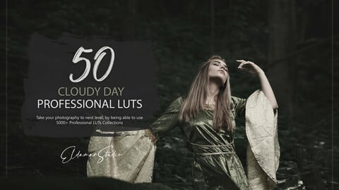50 Cloudy Day LUTs and Presets Pack