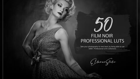 50 Film Noir LUTs and Presets Pack