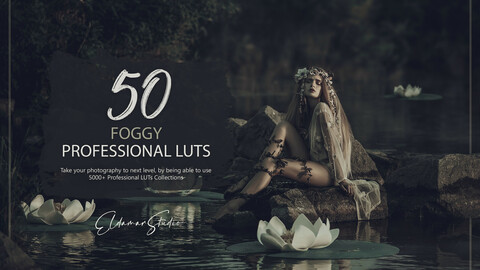 50 Foggy LUTs Pack