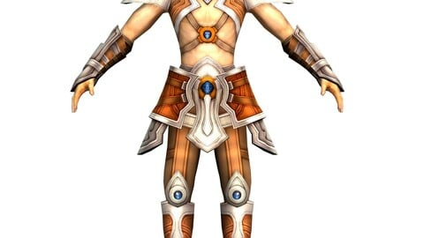 Game 3D Character - Male Warrior 4