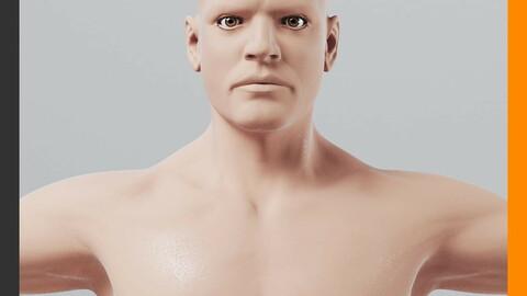 Human Male Body - Anatomy