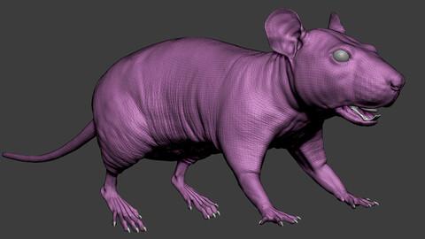 Rat Sculpt