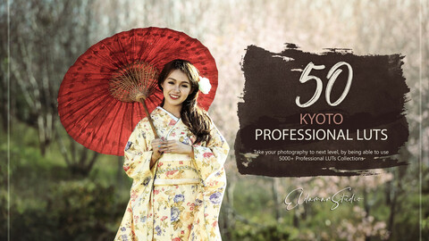50 Kyoto LUTs and Presets Pack