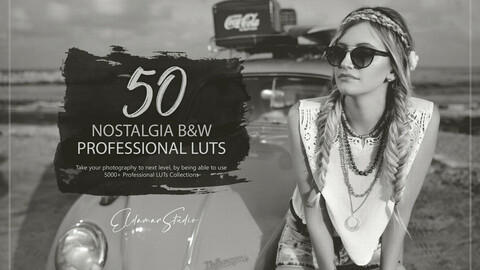 50 Nostalgia Black and White LUTs and Presets Pack