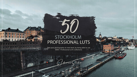 50 Stockholm LUTs and Presets Pack