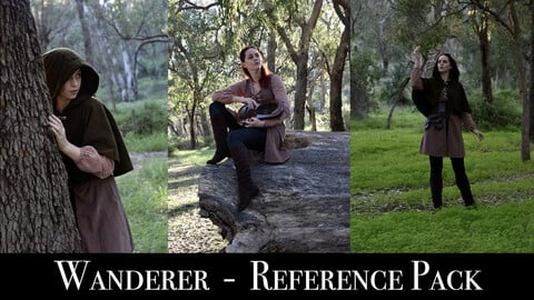 x113 Wandering Bard - Pose Reference Pack