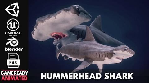 Hammerhead Shark - Game Ready