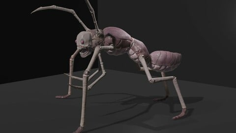 Arthropoda creature