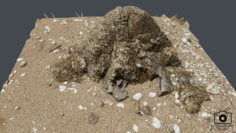 Beach Rock_0019(Photogrametry.Photoscan.obj,Photo)