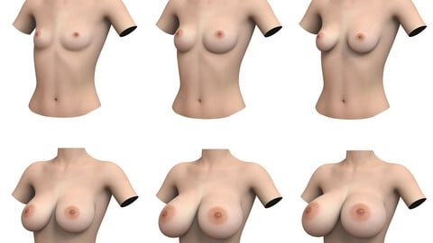 Woman Breast Collection