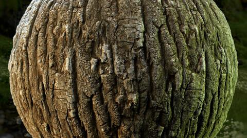 PBR - TREE BARK 01 - 4K MATERIAL