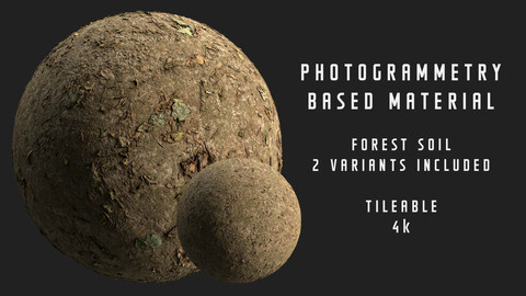 015 Forest path - Photogrammetry based material