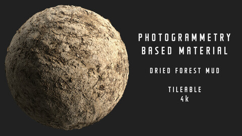 021 Dried forest mud - Photogrammetry based material