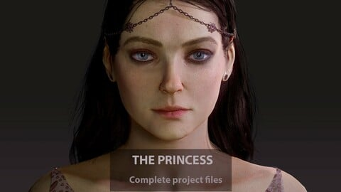 The Princess complete project files