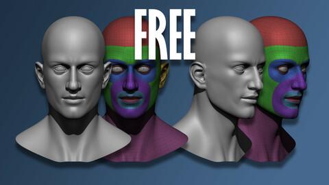 Male Head: 3D Base Mesh Template