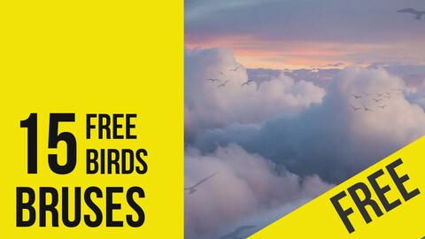 FREE Birds - Brushes for Photoshop