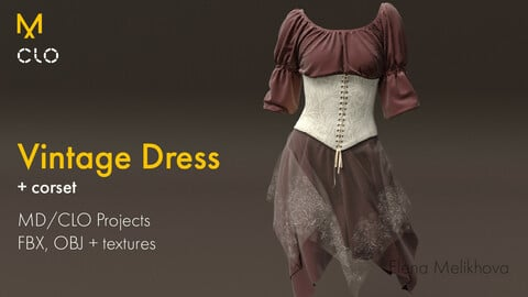 Vintage Dress and Corset