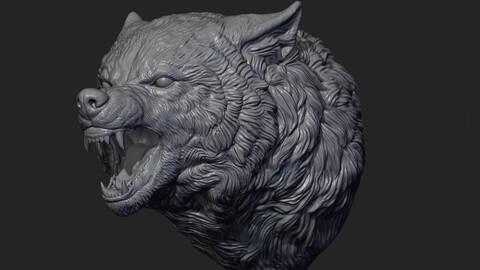 Wolf face head