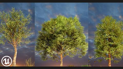 UE5/4 Cinematic Trees pack 01