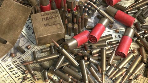 Ammunition: bullets and shell casings