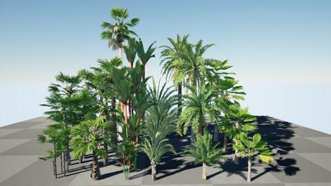 HQ Plants Volume 7 Palms for unreal engine 3D model set of 24