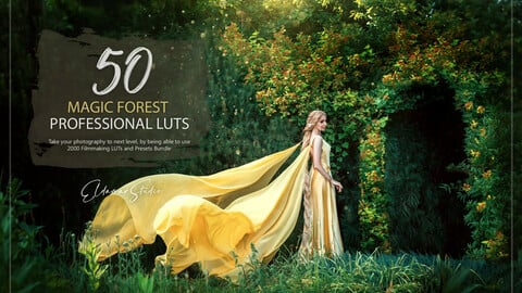 50 Magic Forest LUTs and Presets Pack